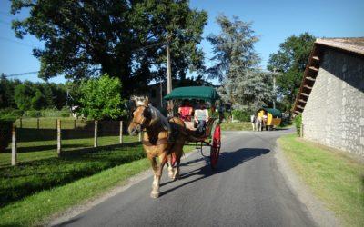 la vie en roulotte, circuler sur la voie publique