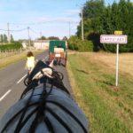 lapouyade, cheval, attelage