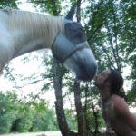 cheval, florian